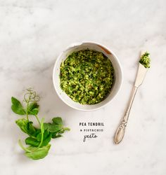 pea tendril & pistachio pesto