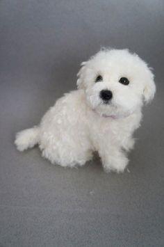 Life Size Needle Felted Puppy #maltese Dog, Wool Maltipoo Shorkie, Felt Animal, Custom Pet Dog Portrait Figurine, Miniature, Pet Memorial by #JanetsNeedleFelting on Etsy #puppy