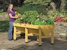 VegTrug Patio Garden | Elevated Raised Bed Planter Love the idea of adding some of these to fulfill my dream of a whole-yard garden.