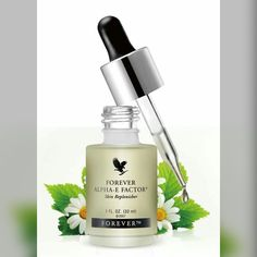 Dry skin care oil rich in vitamines A and E Aloe Vera Skin Care, Aloe Vera Gel, Forever Living Business, Forever Living Aloe Vera, Forever Life, Forever Living Products, Nutrition, Cleanser, Health And Beauty