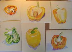 Ideas Gcse Art Sketchbook Themes For 2019 Natural Forms Gcse, Natural Form Art, Natural Shapes, A Level Art Sketchbook, Sketchbook Ideas, Art Alevel, Art Studio Design, Art Folder, Drawing Skills