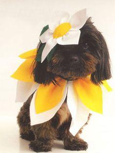 Flower Costume Template