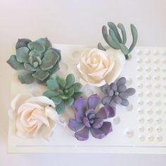 succulent cakes, sugar succulents, gumpaste succulents. sugar rose, Sugar Flowers Assorted Succulents and Roses Edible Cake Topper, sugar flowers,