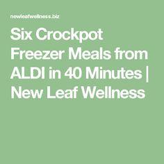 Six Crockpot Freezer Meals from ALDI in 40 Minutes | New Leaf Wellness