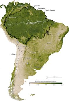 South America and the Amazon, vegetation index, by NASA #map #amazon #southamerica