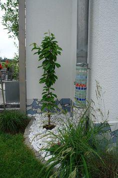 Mosaik an der Mauer - Seite 1 - Gartengestaltung - Mein schöner Garten online