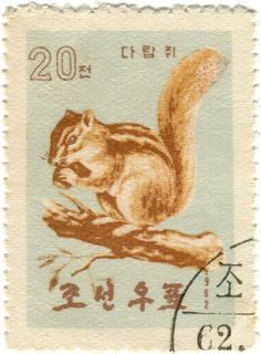 north korea postage stamp, chipmunk by karen horton, illustratin, lovely pale colours, collage, vintage