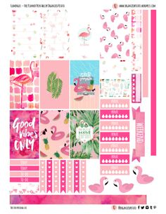 Flamingos - Free Planner Printable for HPC #freeprintable #printable #plannerprintable #happyplanner #flamingo #flamingos #pink #hotpink #summer #summervibes #goodvibes #goodvibesonly #pool #tropicalleaf #tropicalleaves #mambi #plannerstickers #plannerideas #plannerinspo #eclp #erincondren #filofax #kikkik #websterspages #travelersnotebook #organizedpotato