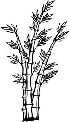 Stock vector of 'Hand drawn, vector, cartoon illustration of bamboo' Outline Drawings, Pencil Art Drawings, Bamboo Image, Bamboo Drawing, Bamboo Background, Panda Drawing, Bamboo Tattoo, Japanese Tree, Tiki Art