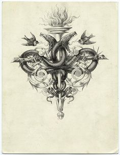 Common elements Contains the 4 elements: air (birds, water (serpents), fire (torch) and Tribal Tattoos Designs However, modern tribal tattoo. Sketch Tattoo Design, Tattoo Sketches, Body Art Tattoos, Sleeve Tattoos, Snake Sketch, Air Birds, Element Tattoo, Snake Art, Occult Art