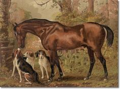 Antique Equestrian Paintings | ... Cassell's Book of the Horse