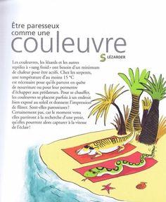 Le café de  Madame Dugot: Des expressions françaises:deuxième partie