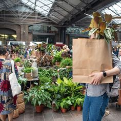 Things To Do In London, All Things, Potted Plants, Garden Plants, London Market, Green Rooms, Website Link, Plant Decor, Houseplants