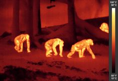 infrared - Google Search