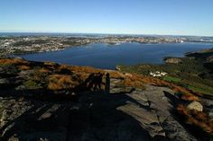 Go hiking and enjoy the great view from Dalsnuten, a 324 m. mountain in Go Hiking, Hiking Tips, Tourist Sites, Visit Norway, Stavanger, Midnight Sun, Great View, Places Ive Been, The Good Place