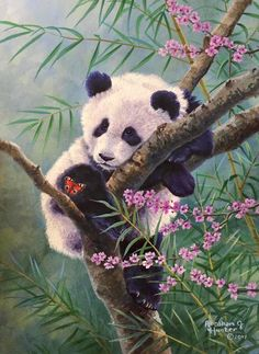 Do you love solving jigsaw puzzles? Puzzles for Friends is for you! Cute Wild Animals, Animals Beautiful, Animals And Pets, Baby Animals, Beautiful Images, Animal Sketches, Animal Drawings, Panda Mignon, Panda Painting