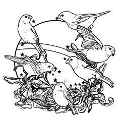 birds/stars print 2023 - João Paulo Tiago