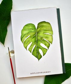 Monstera leaf - I think I did a better job at this one than at the banana leaves haha. What do you struggle most with detailed painting? For me it's knowing where to shade the lights & darks. . . . . . . . . . #watercolours #plantlover #natureillustration #watercolour_gallery #dailypaint #letteringchallenge #monstera #tropical #calligrabasics #botanicalart #artistsoninstagram