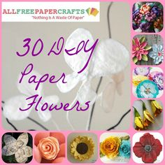 How to Make Paper Flowers: 30 DIY Paper Flowers