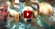You've Gotta See This Adorable Doggie's Newest Trick. It'll Have You Bubbling Over With Joy!