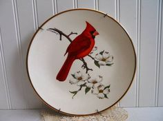 porcelain cardinal avon collectible plate from mamiezvintage Vintage Avon, Vintage Items, Avon Collectibles, Plate Hangers, Birds Of America, Black Bedding, Vintage Home Decor, Wall Decor, Plates