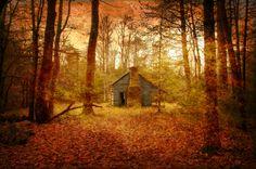 Cabin with door open