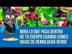 Mira Lo Que Pasa Dentro De Tu Cuerpo Cuando Comes HOJAS DE REMOLACHA VERDE. - YouTube