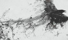 полет, брызги, crow, дым, ворон, черное 800x480