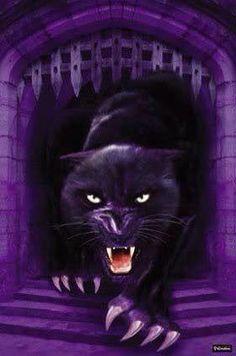 Purple Love, All Things Purple, Purple Lilac, Shades Of Purple, Purple Style, Purple Animals, Purple Party, Sweet Violets, Purple Orchids