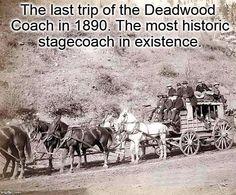 Deadwood Coach 1890