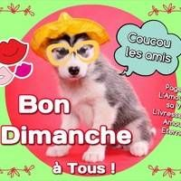 Bon Dimanche à tous ! Coucou... Amour Éternel, Fictional Characters, Images, Sunday, Costume, Google, Sunday Coffee, Sunday Humor, Hapy Day