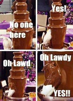 Funny pictures about Parrot finds a chocolate fountain. Oh, and cool pics about Parrot finds a chocolate fountain. Also, Parrot finds a chocolate fountain. Stupid Funny, Haha Funny, Funny Cute, Funny Stuff, Funny Humor, Very Funny Pics, Funny Drunk, That's Hilarious, Funny Ads