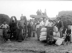 Cséplés a Görgénytanya nevű keresztúri határrészben, 1935 Székelykeresztúr fényképésze, Nagy Béla - www.oroksegunk.ro