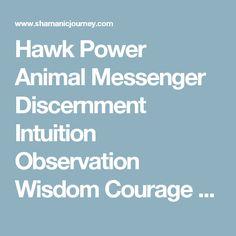 Hawk Power Animal Messenger Discernment Intuition Observation Wisdom Courage Truth – Shamanic Journey