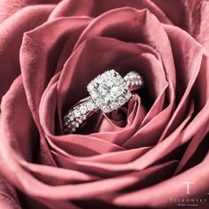 True beauty comes from within! So is the case with this Ideal Cut Diamond engagement ring from Tolkowsky-- a perfect combination of design, brilliance, fire and sparkle! Ideal Cut Diamond, Kay Jewelers, True Beauty, Diamond Engagement Rings, Sparkle, Fire, Beautiful, Jewelry, Design