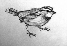 A Sparrow, Pencil Sketch, Sketchbook Pencil Drawing, Bird Sketch, Fine Art Print reproduction,  4.5 x 6.5 with 8 x 10 mat