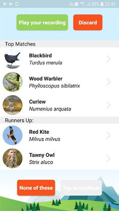 ChirpOMatic - Automatic Bird Song ID (Europe) - Apps on Google Play
