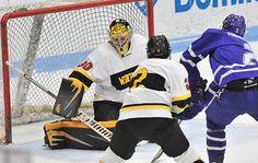 Wentworth Hockey holds off late Endicott comeback Feb 3, 2016.