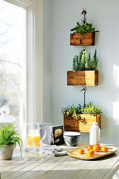 Perfect cottage herb garden on the wall. Vintage boxes do double duty as wall décor. #kitchenherbgarden #cottagedecor