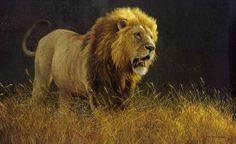 "Robert Bateman Presents ""Into the Light - Lion"""