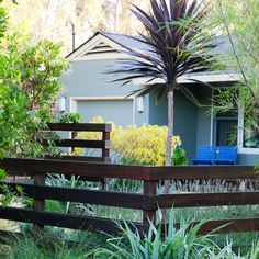 """Balance the public and private   The fence panels of ipe wood, together with Arbutus trees, define the new outdoor room but don't completely block the view from the street. """"We have a warm, friendly neighborhood, so I didn't want anything barrier-like,"""" says Ginny."""
