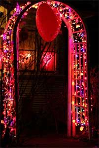 Red White Pink and Purple string lights. Valentines day lights. String the lights over a gazebo for that special day