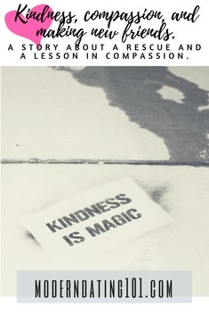 A story of kindness compassion lessons learning making new friends #compassion #kindness #momlife #makingfriends
