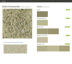 Giallo Ornamental. Granite Collection. Natural stone. Daltile. Behr. Benjamin Moore. PPG Paints. Ralph Lauren Paint. Valspar Paint.  Click the gray Visit button to see the matching paint names.