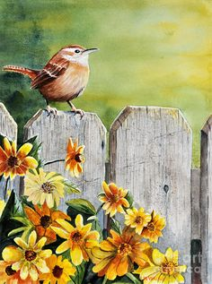 Hello Morning Painting by John W Walker - Hello Morning Fine Art Prints and Posters for Sale Watercolor Bird, Watercolor Paintings, Art Paintings, Watercolors, Pictures To Paint, Bird Art, Beautiful Birds, Painting & Drawing, Fine Art America