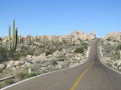 Baja California Desert - know these roads way too well, Tequila Sunrise?