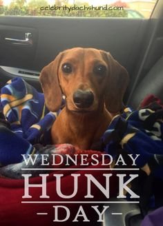 Today's Wednesday Hunk is O'Neill from San Jose, California.