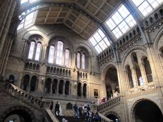 The Entrance Hall of the Natural History Museum in London