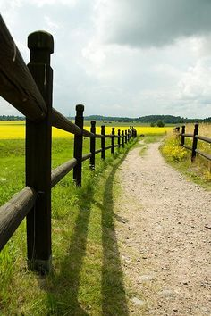 Uppsala. Long shadow by Karin W K, via Flickr