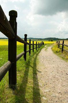 Uppsala. Long shadow by Karin W K, via Flickr